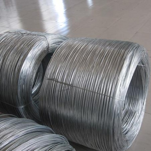 Electro Galvanized Wire Manufacturers Electro Galvanized