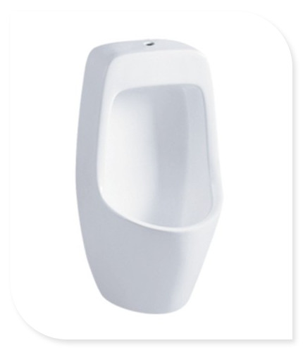 Bathroom accessories inexpensive wall hung urinal for Water tech bathroom fittings