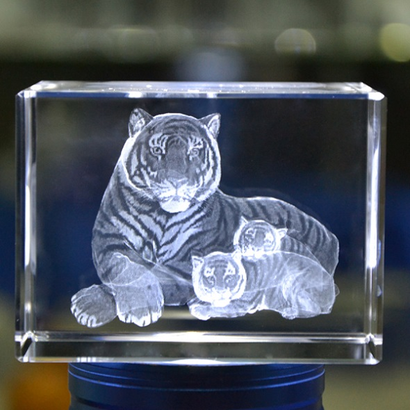 D Etching Inside Glass