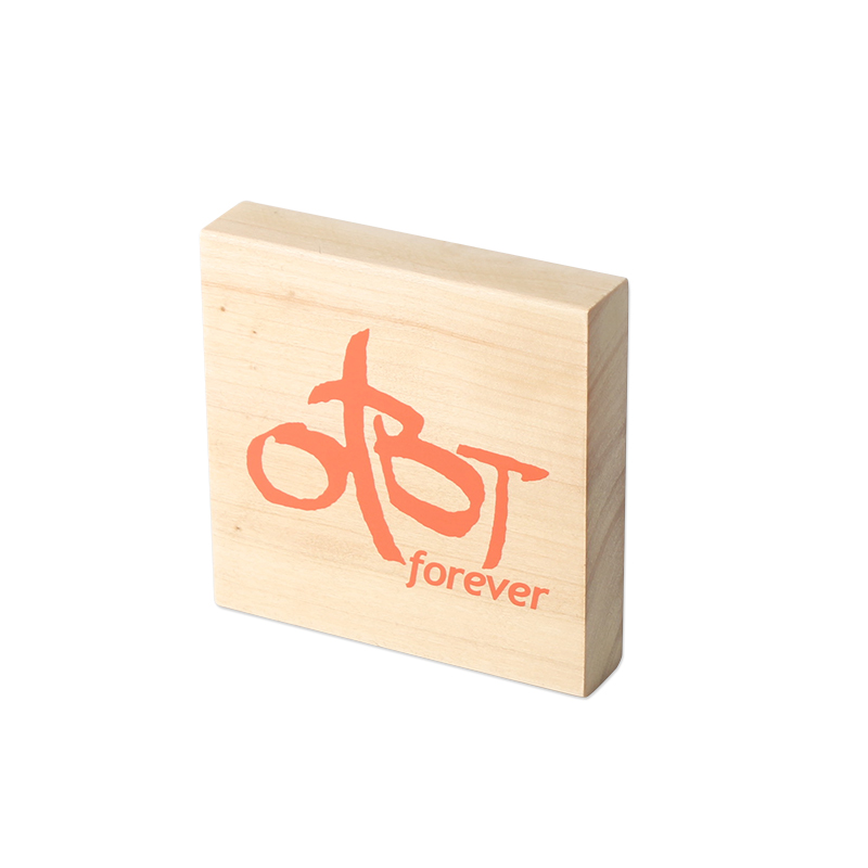 Wood Logo Block